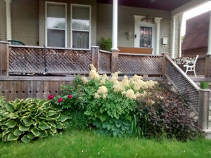 Room or house share for female student or working in Sarnia area