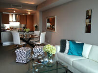 Luxurious fully furnished executive condo