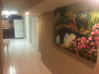 Brand New Luxurious furnished basement available for rent .