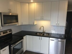 Renovated 3 Bedroom Apartment