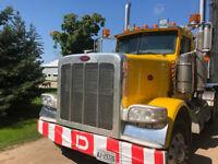 Experienced DZ Truck Driver
