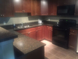 2 Bedroom, 2 Bathroom with Den Furnished or Unfurnished for Rent