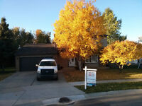 6 bedrm Exec house on woodlot Timberlea- unfurn-rental purchase