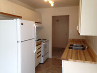 Two bedroom apartment for rent. Last months free