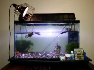 AQUARIUM everything you need for aquatic turtle or fish