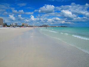 Siesta Key Florida, voted #1 beach in America!! NOV SPECIALS