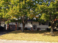 772 BUTTERNUT ST - OPEN HOUSE SUNDAY 1-3 - NOW ASKING $299,000