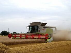 Tractor drivers needed for 1500ha arable farm in West Cambridgeshire