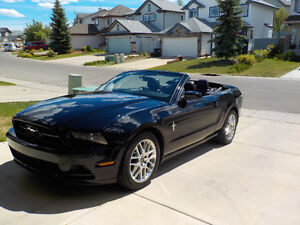 2013 Ford Mustang Convertible - Premium Pony Package
