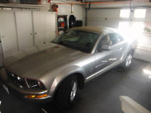 2008 Ford Mustang Pony Coupe (2 door)