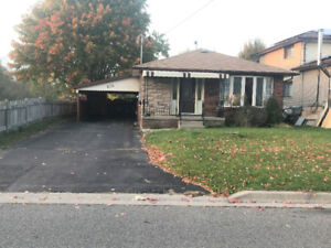 Spacious 3 Bedroom Basement, Newly Renovated
