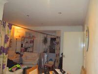 Fantastic 3 Bedroom Semi-Detached To Rent