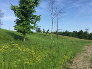 Beautiful Country Lot - Minutes from town