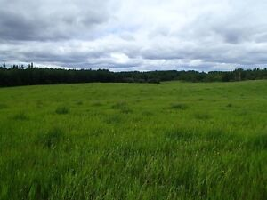 3 Parcels of Farmland - Unreserved Auction - Athabasca, AB