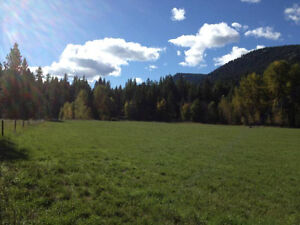 101 Acres in Christian Valley, BC