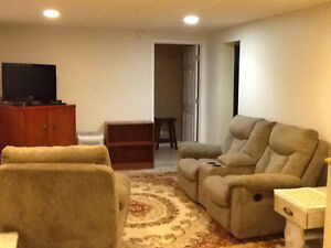 Furnished optional: bright, spacious, newly renovated