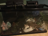 33 gallon fish tank with stand