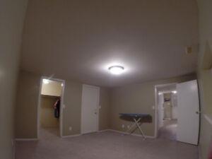 February 1st Basement suite 1100$!!!