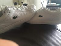 As BRAND NEW Lacoste genuine white leather trainers size 3 unisex