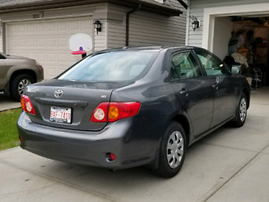 Toyota Corolla 2010 CE *immaculate condition* PRICED TO SELL