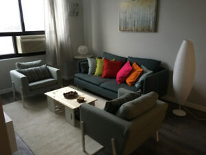 Fully Furnished  Apartment In The Heart Of Kitchener