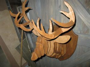 tete de cerf Saguenay Saguenay-Lac-Saint-Jean image 2