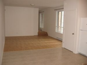 Big 5 1/2 with mezamine - bedroom and bathroom, 1200SF, downtown