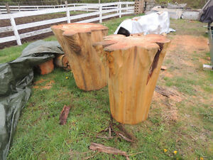 cash for red cedar log butt ends with flaring-short lengths