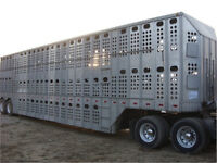 Class-1 Driver to Haul Livestock (cattle and hogs)