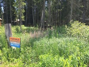 Vacant Lot to start Lake Living at KIV/MLB Turtle Lake!