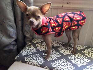 Handmade Dog Clothes and Costumes