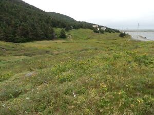 Land For Sale Point Verde Placentia Area St. John's Newfoundland image 9