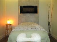 Personal Training & Registered Massage Therapist Pro Fit Studio