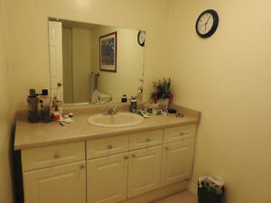 Western University Student Room Rental (ONE ROOM LEFT) London Ontario image 3