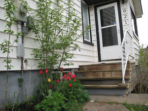 A nice dplex 2BR close to champlain everything included