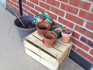 Small Plant Pots and Dirt.