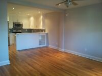 Spacious 2 bedroom apartment in the Heart of Byward Market