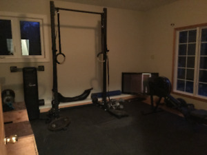 *UPDATED* Crossfit/Home Gym Equipment- Rig, Plates & Dummies