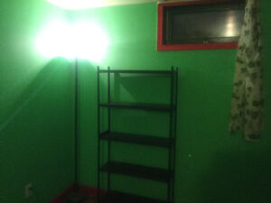 Room in basement of house near u of m move in today! Great spot!