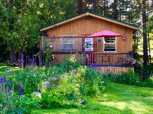 Pet Friendly Kootenay Cottage for Two (Aug 20-31 available)