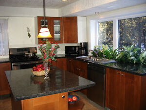 Granite Island Countertops, clearance, in specific sizes Kitchener / Waterloo Kitchener Area image 1