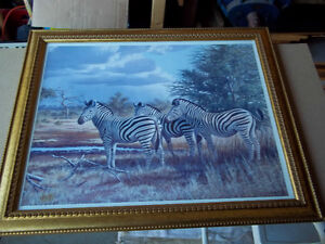 "Framed print of a Zeal of Zebras 23"" x 19"""