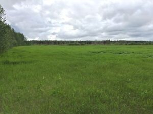 159 Acres in Goodridge Alberta (Bonnyville MD) Strathcona County Edmonton Area image 3