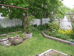 Two bedrooms for rent. Fully furnished,  utilities included St. John's Newfoundland image 7