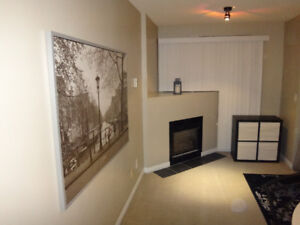 One Bedroom Fully Furnished Apartment Next to Lougheed Mall