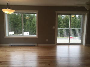 New 2 Bedroom Townhouse/Condo for Rent in Salmon Arm