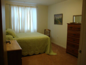 Clayton Park Available Nov. 1 Quiet Lacewood Dr Room, Central