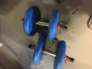 4.5kg weight set