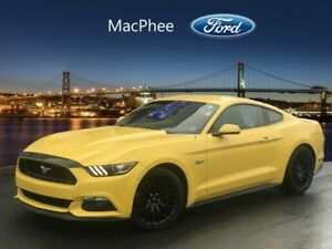 2015 Ford Mustang GT Premium  - Low Mileage