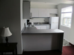 Bright, Spacious, Fully Furnished Downtown One Bedroom